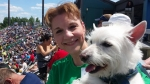View the album 2014 Take Your Dog to the Ballgame